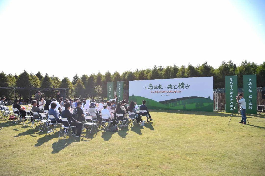 上海横沙碳汇林:守望绿色,一直种到大地变绿