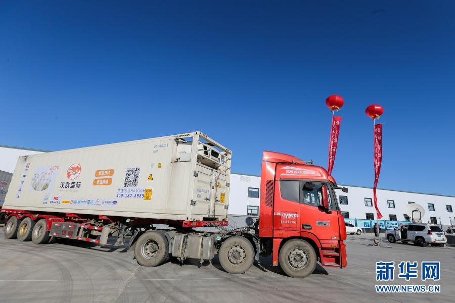 首批已加工蒙古国捐赠羊开始运往湖北
