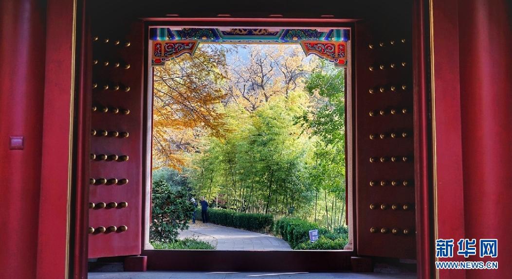 绚绚烂景色如仙境 晒崂山太清宫初冬之美