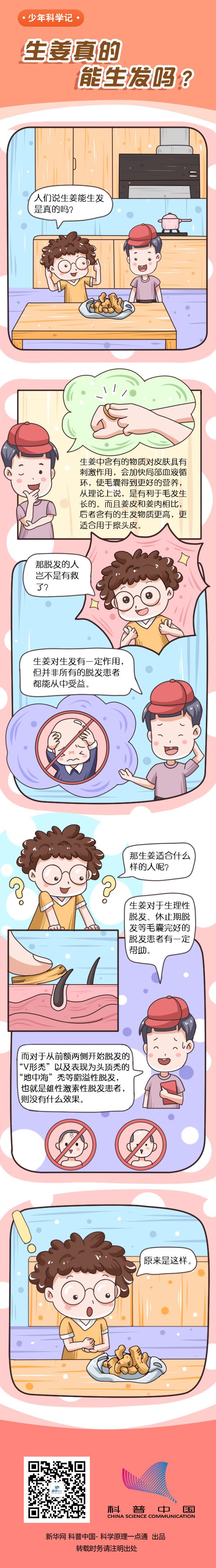 [少年科学记]生姜真的能生发吗?