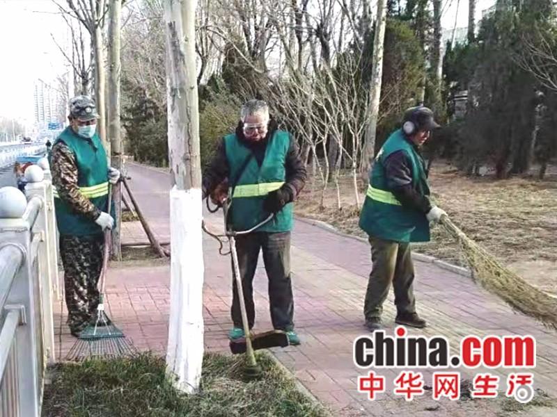 山东烟台:莱山区综合行政执法局开展园林安全防护工作