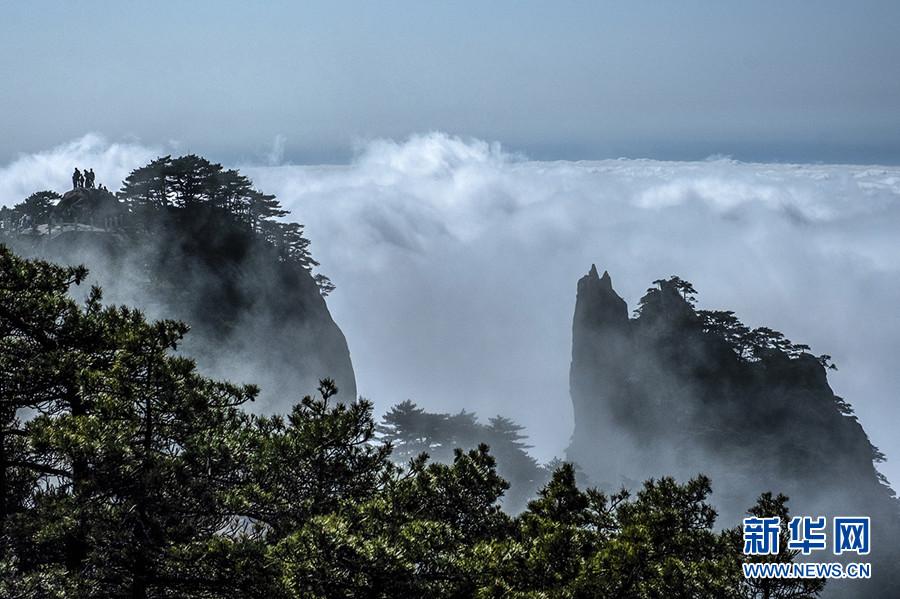 黄山:清明现云海 美景入画卷