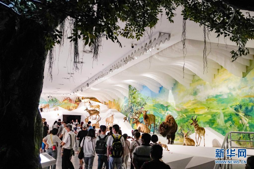 重庆北碚:走进自然博物馆 感受自然科学的魅力