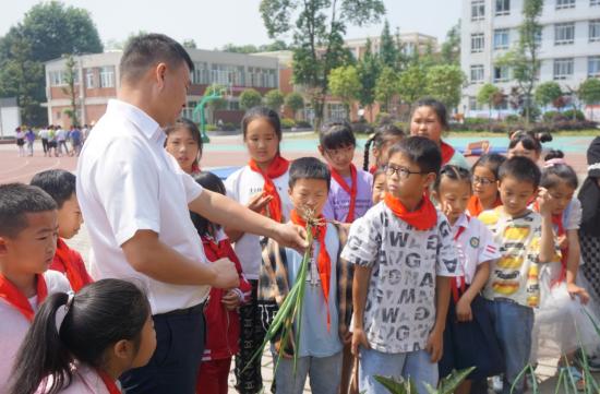 彭州市九尺小学开展劳动体验课程