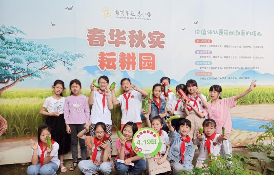 彭州市延秀小学开展秋收劳动教育主题实践活动