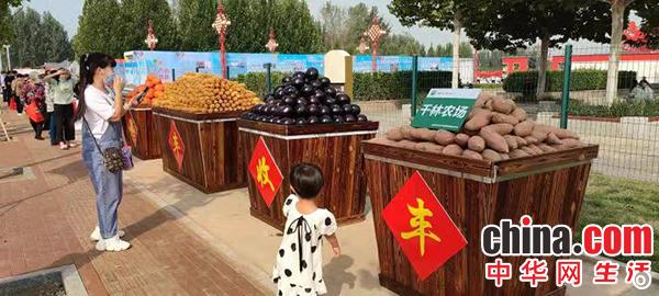 """河北廊坊举办系列活动庆祝第四个""""中国农民丰收节"""""""