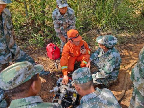 传授专业技能,砥砺森林安全