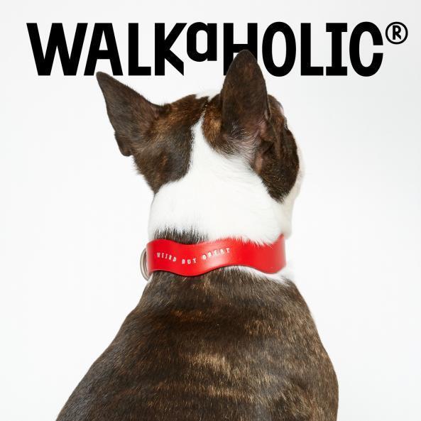 WALKaHOLIC® × 電力宠物公司联名开发宠物牵引项圈系列,前滩太古里开幕发布