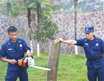 三明支队泰宁大队严密组织油锯实操训练