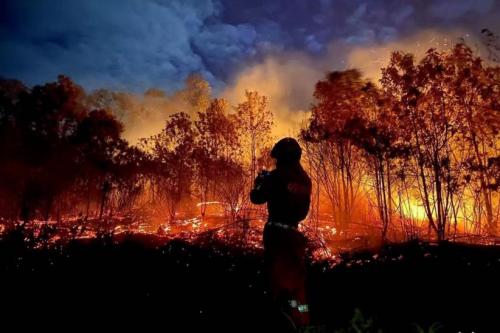 与记忆对话,和时间交谈,唤醒森林消防记忆