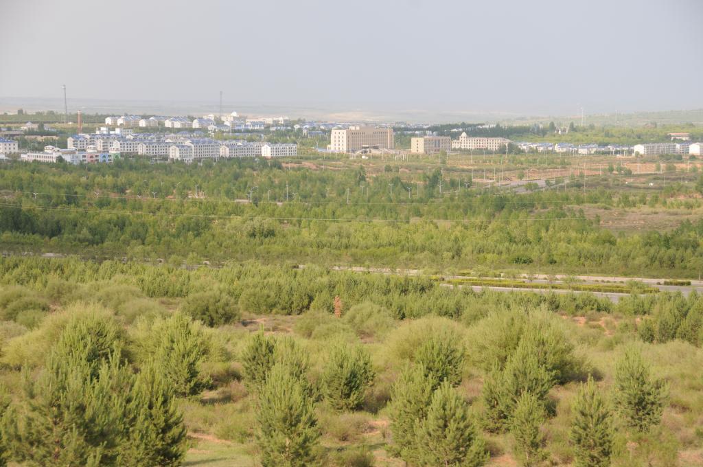 新华全媒+|约等于3个北京!内蒙古5年治理沙化土地近7200万亩