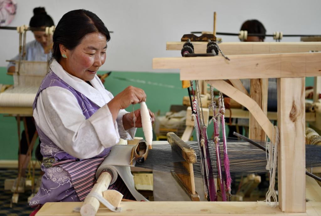 西藏将打造700家以上资产过百万元农牧民合作社
